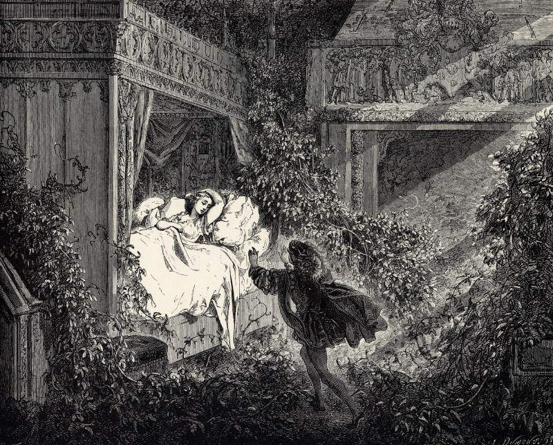 La_Belle_au_Bois_Dormant_-_Sixth_of_six_engravings_by_Gustave_Doré