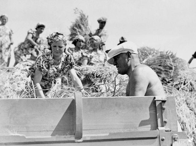 Mussolini a Littoria per la trebbiatura del grano - 1938