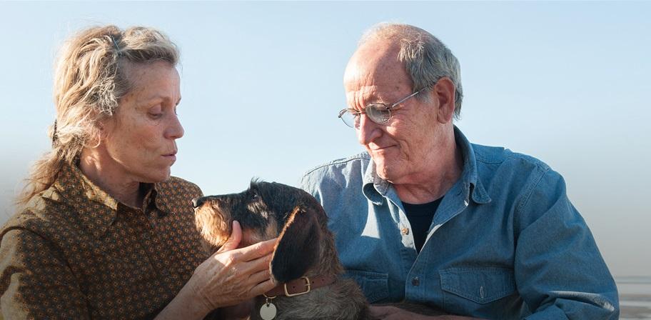 Frances McDormand e Richard Jenkins