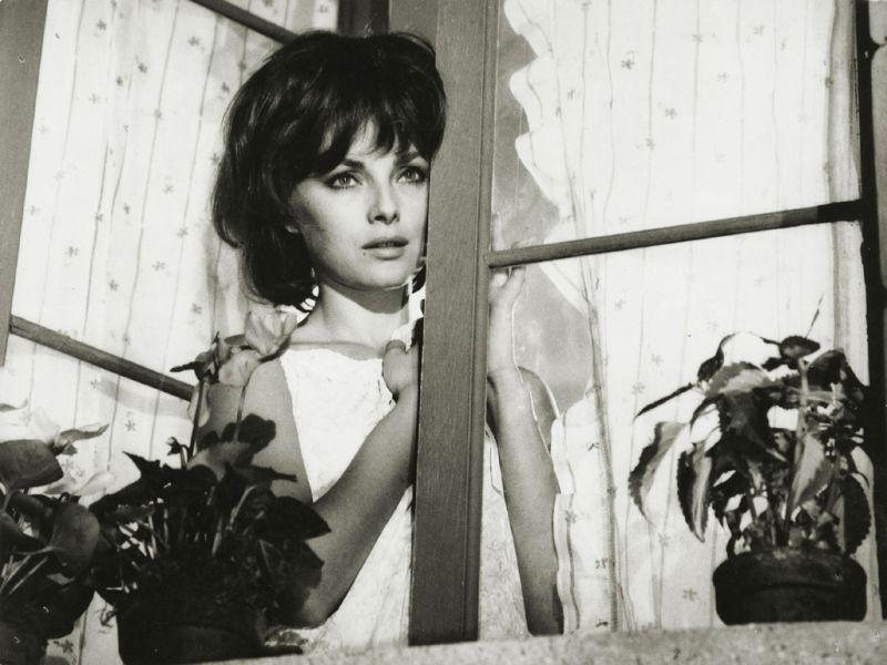 """Nel bellissimo """"Signore & Signori"""" di Pietro Germi (1966)"""