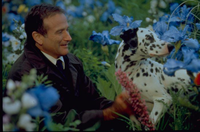 "Robin Williams in ""Al di là dei Sogni"""