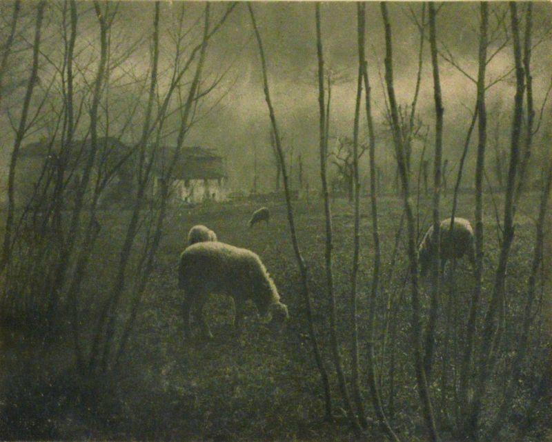 Domenico Riccardo Peretti Griva, Ultime luci, ante 1925 Stampa al bromolio Collezione Museo Nazionale del Cinema