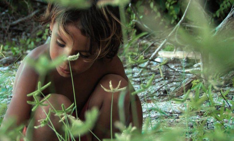 Alamar di Pedro González-Rubio, un viaggio verso la natura incontaminata da cameralook