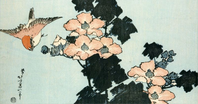 Weeping cherry and bullfinch. Colour woodblock print, c. 1834.