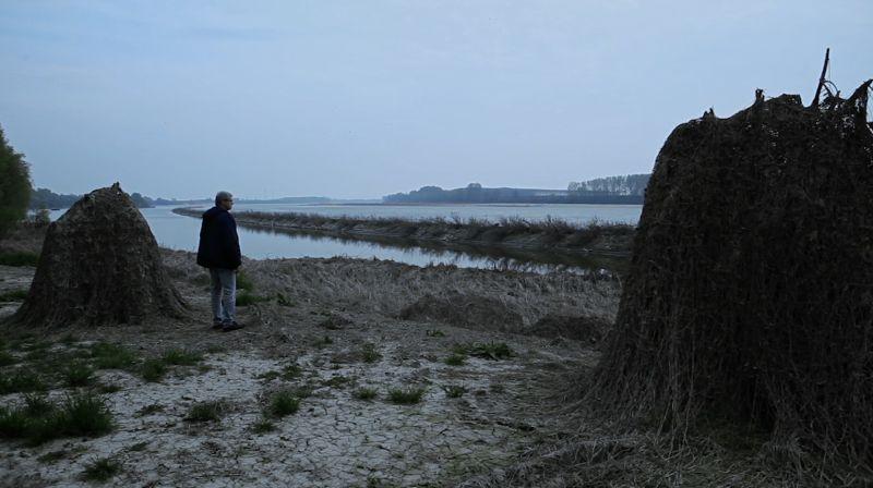 NNPDQG - RIVE DEL PO