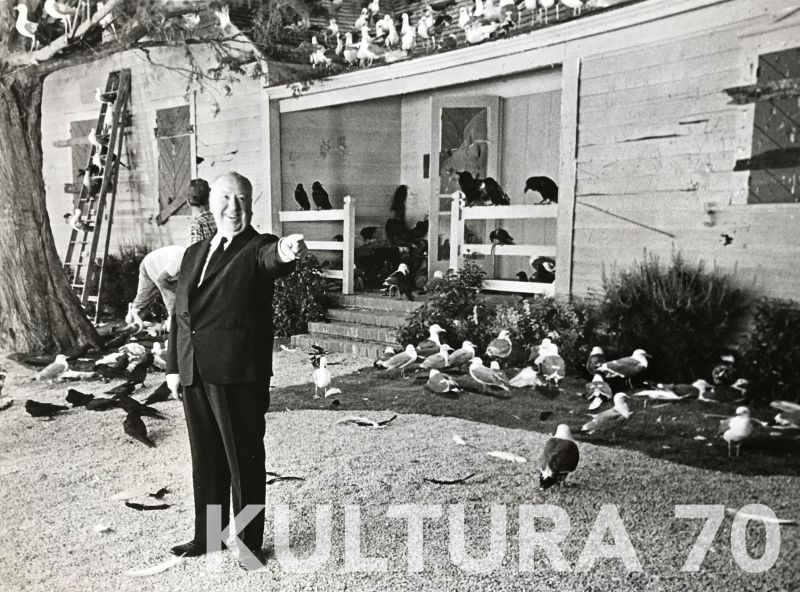 Anonimo. Alfred Hitchcock sul set Gli Uccelli, 1963. Carta b/n politenata vintage, cm 18×23. Dattiloscritto didascalico su velina in inglese a retro.