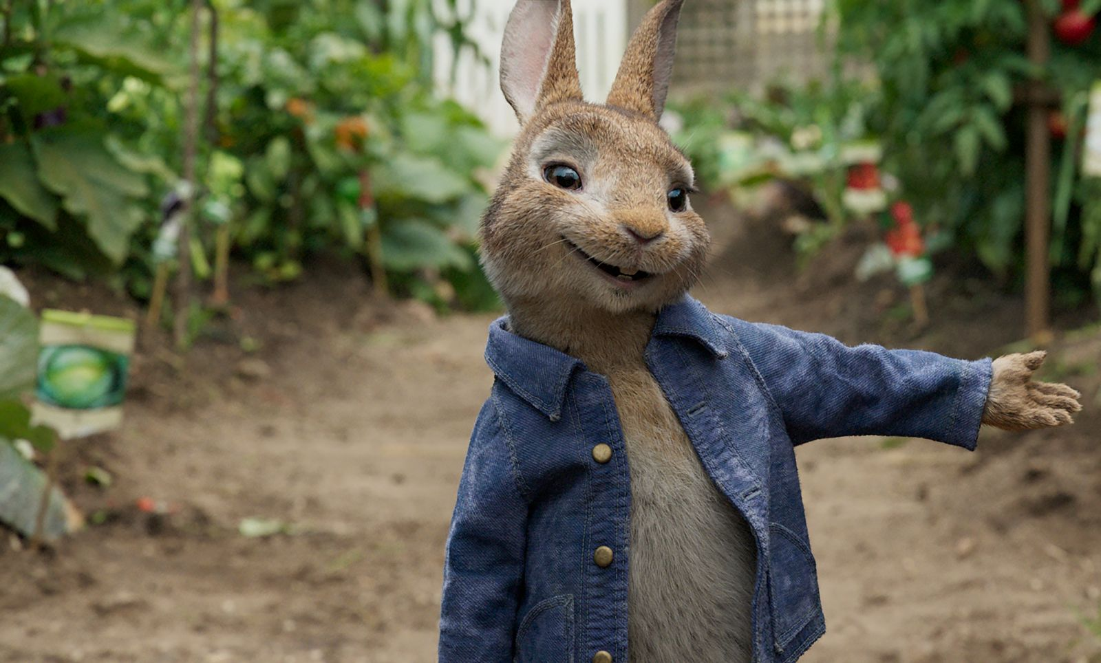 Peter Rabbit 0