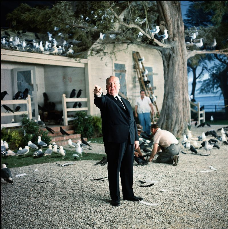 Alfred Hitchcock sul set del film Uccelli ( 1963) Uccelli, 1963 © Universal Pictures