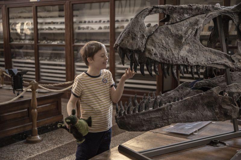 Mio Fratello Rincorre i Dinosauri 2