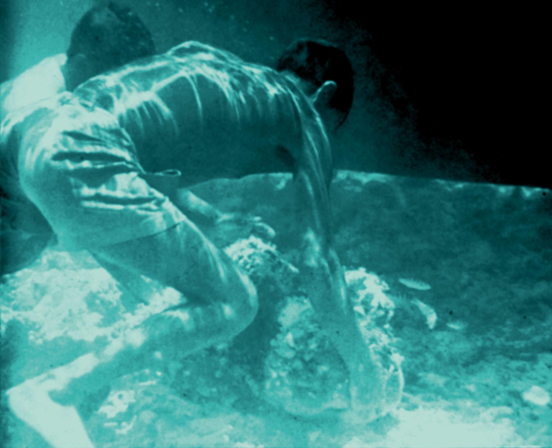 immagine Oceano Indiano
