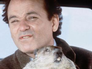 Giorno Marmotta 0