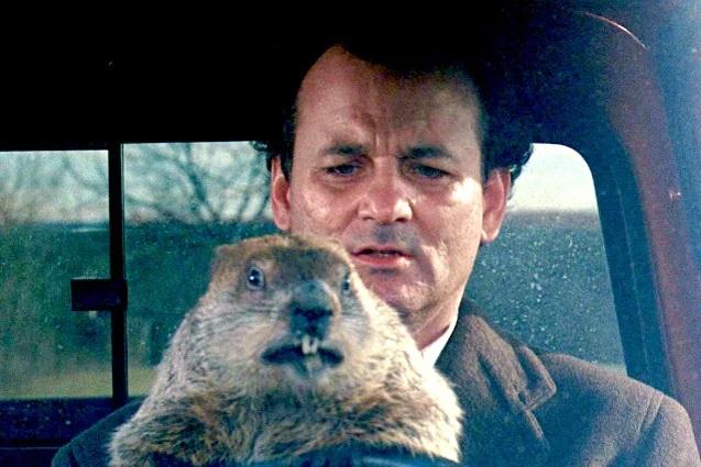 Giorno Marmotta 4