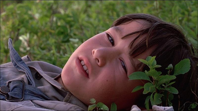 """Un giovane Joseph Gordon-Levitt in """"In Mezzo Scorre Il Fiume"""""""