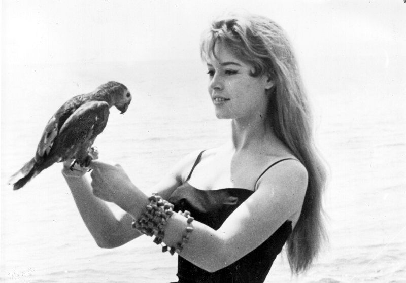 16th May 1956:  Brigitte Bardot, originally Camille Javal, began her career as a model and ballet student. Her first film was 'Le Trou Normand' in 1952 which followed from an appearance of her on the cover of Elle magazine. Brigitte became a celebrated sex symbol of the 1960's, she did much to popularise French cinema internationally. Included amongst her most popular films are 'And God Created Woman' (1950), 'Viva Maria (1956) and 'Shalako' (1968).  (Photo by Topical Press Agency/Getty Images)